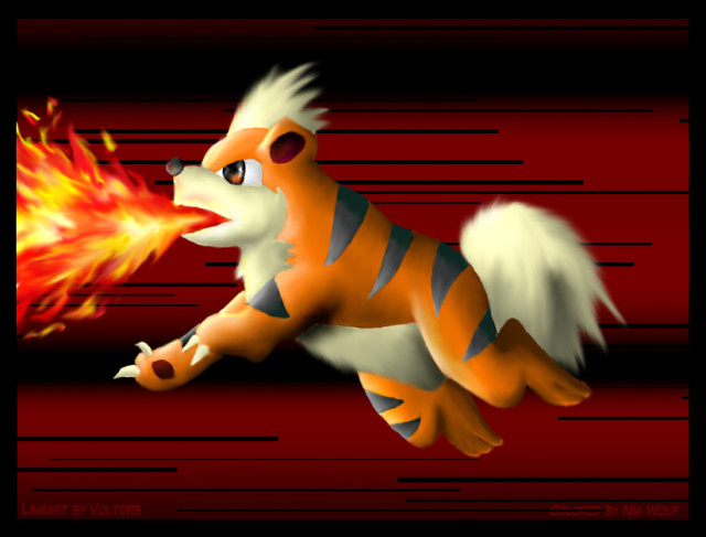 Growlithe in action