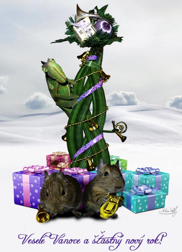 Přání k Vánocům 2013